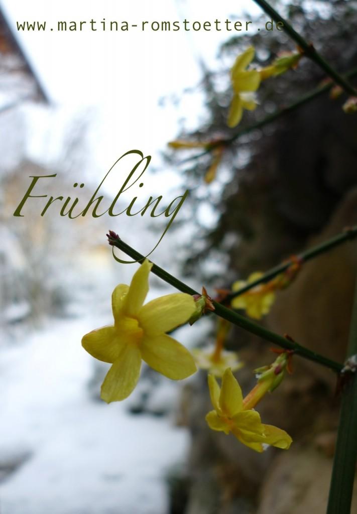 Gartenrundgang_Februar_P1180434 002