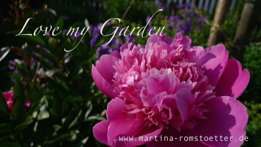 Lovemygarden_P1190691 005