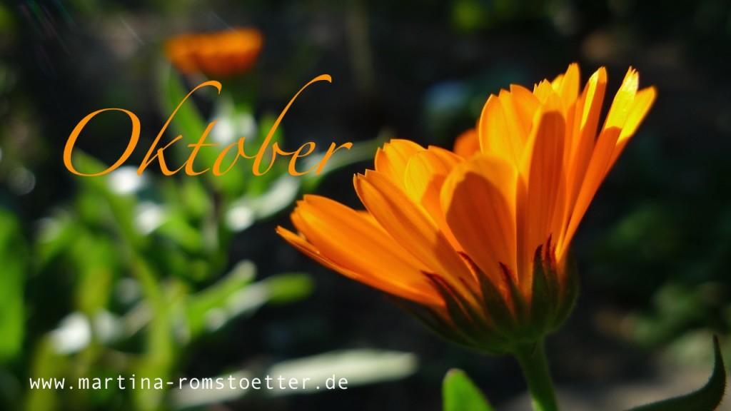 Oktobergarten_P1200627 014
