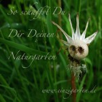Naturgarten_Löwenzahn-Wichtel_Text