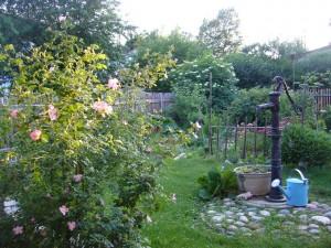 Garten_Vorher_Nachher012