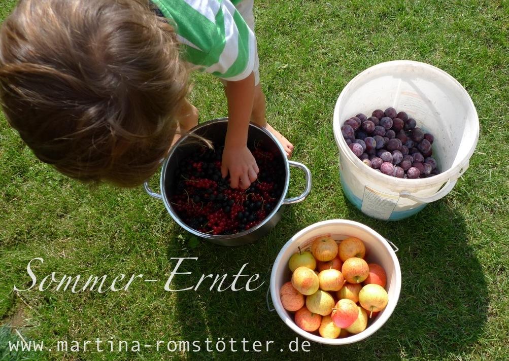Ernte_P1170178 005