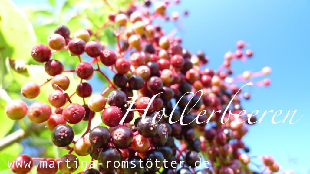 Hollerbeeren_P1170434 002