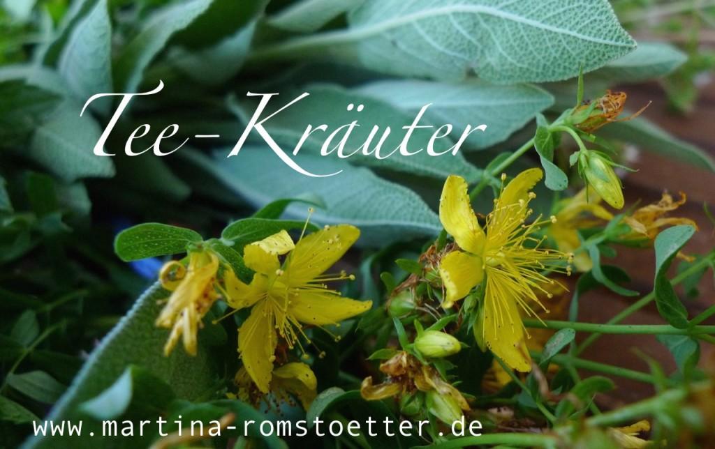 Kräuter_trocknen_P1200007 001