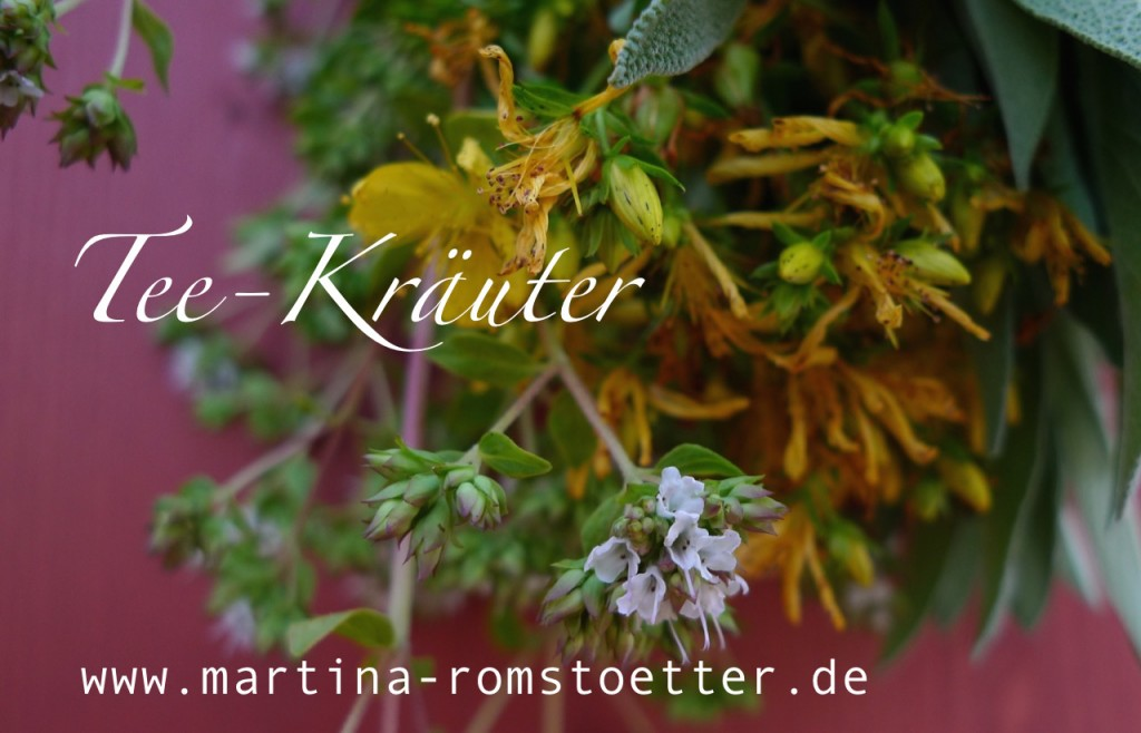 Kräuter_trocknen_P1200014 004