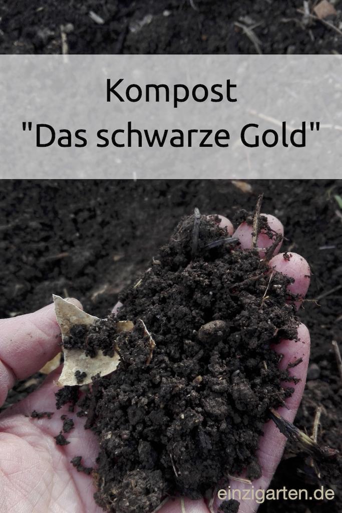 Kompost - das schwarze Gold